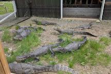 Indian River Reptile Zoo, Peterborough, Canada