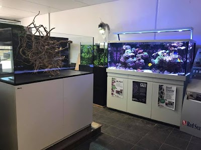 Abyss Aquariums