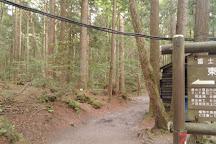 Fugaku Wind Cave, Fujikawaguchiko-machi, Japan