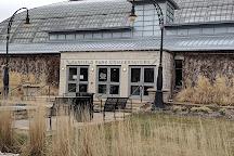 Garfield Park Conservatory, Chicago, United States