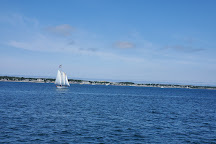 Dolphin Fleet Whale Watch, Provincetown, United States