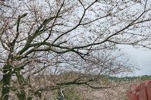 Matsushita Art Museum, Kirishima, Japan