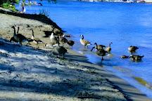 Wasaga Beach Provincial Park, Wasaga Beach, Canada
