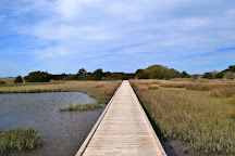 Fort Fisher State Recreation Area, Kure Beach, United States