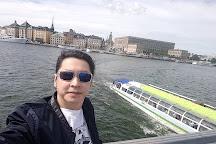 O'Learys - Tolv Sthlm, Stockholm, Sweden
