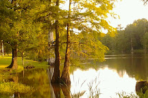 Leroy Percy State Park, Hollandale, United States