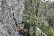 21 Climb and Tour, Cayey, Puerto Rico