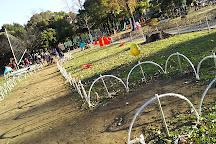 Motofuchi Park, Adachi, Japan