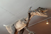 The Dinosaur Museum, Dorchester, United Kingdom