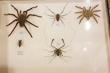 Muséum d'Histoire Naturelle de Chambéry, Chambery, France