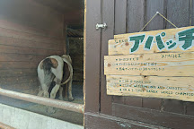 Tonden Farm Akaigawa Ranch, Akaigawa-mura, Japan