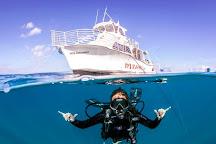Dive Oahu, Honolulu, United States