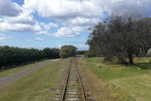 The Q Train, Drysdale, Australia
