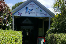 Coffs Harbour Butterfly House, Bonville, Australia