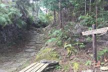 Yakiyama Pass, Owase, Japan