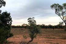 Lake Mungo, Pooncarie, Australia