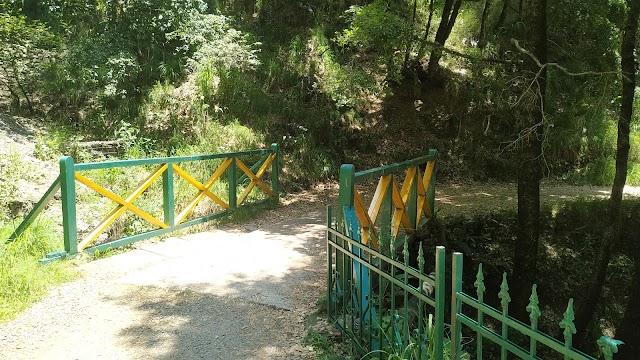 Shimla Water Catchment Wildlife Sanctuary