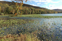 Rockland Lake State Park, Valley Cottage, United States