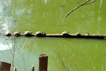 River Park North, Greenville, United States