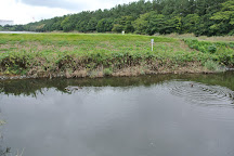 Gyotoku Wildlife Sanctuary, Ichikawa, Japan