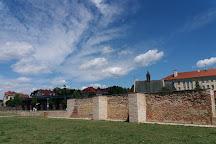 Basilica of Assumption of Mary and Saint Cyrillus and Methodius, Velehrad, Czech Republic
