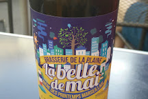Biere de la Plaine, Marseille, France