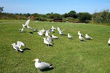 Holyhead Breakwater Country Park, Holyhead, United Kingdom