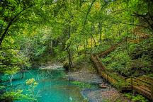 Devil's Millhopper Geological State Park, Gainesville, United States