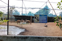 Children's Park, Chennai (Madras), India