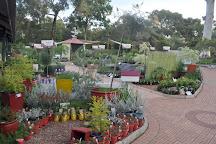 Zanthorrea Nursery, Maida Vale, Australia