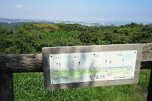 Mt. Futago, Hayama-machi, Japan