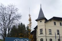 Villa Mayer, Šoštanj, Slovenia