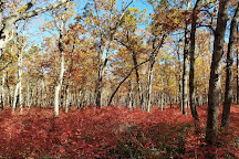Allaire State Park, Farmingdale, United States
