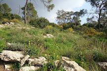 Stalactite Cave Nature Reserve, Beit Shemesh, Israel