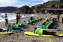 Van Curaza Surf School, Avila Beach, United States