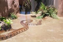 Siam Serpentarium, Bangkok, Thailand