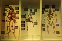Museo de la Evolucion Puebla (Museum of Evolution Puebla), Puebla, Mexico
