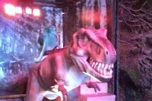 Planetarium360 & Dino Live, Dubai, United Arab Emirates