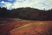 Swasey Recreation Area, Redding, United States