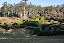 Bago Vineyards and Bago Maze, Wauchope, Australia