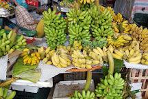 Con Market, Da Nang, Vietnam