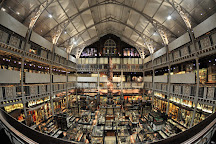 Pitt Rivers Museum, Oxford, United Kingdom