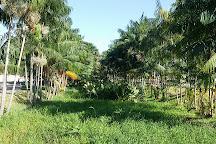 Parque do Mutuca, Gurupi, Brazil