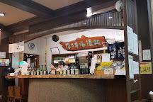 Ozawa Sake Brewery, Ome, Japan