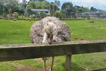 Pouakai Zoo, New Plymouth, New Zealand