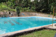 Finca Paraiso Organico, La Fortuna de San Carlos, Costa Rica