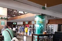 Pontoon Bar, Sydney, Australia