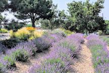 Denver Botanic Gardens at Chatfield Farms, Littleton, United States