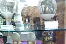 Imperial Egg Gallery, Beaufort, Australia