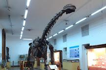 Nuevo Museo de Ciencias Naturales, Cordoba, Argentina